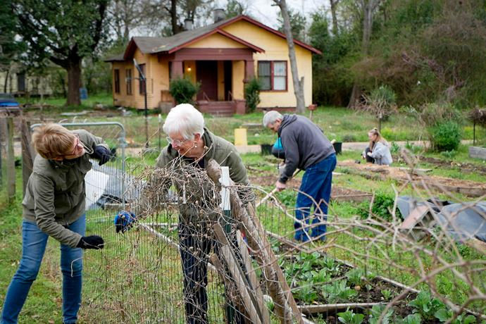 Cathy Schmid and Mary Grieser clear vines while Gerald Fryenberger hoes plant rows at Jackson City Farm. The garden, one of two managed by Open Door Mennonite Church, produces both food and learning opportunities for community members.